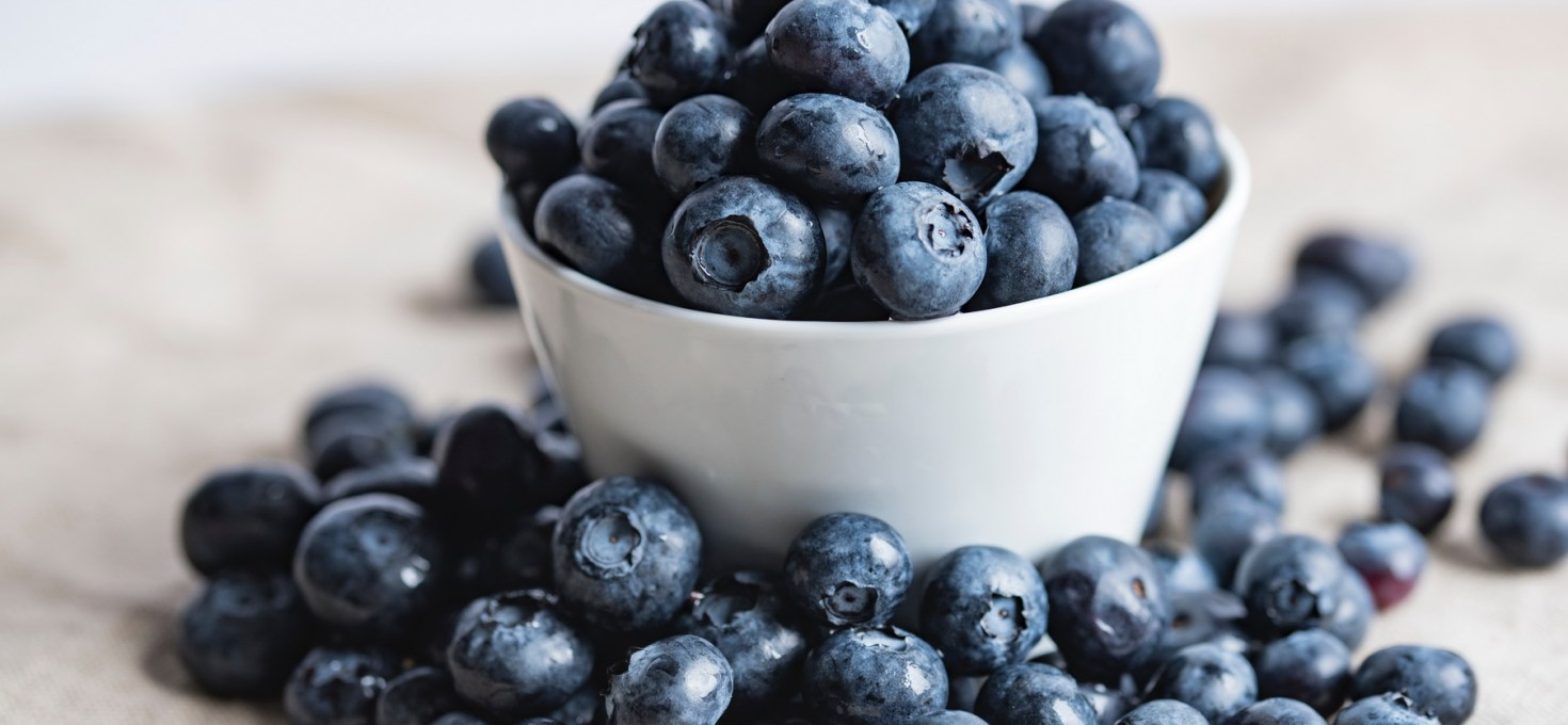 Hearty Blueberries