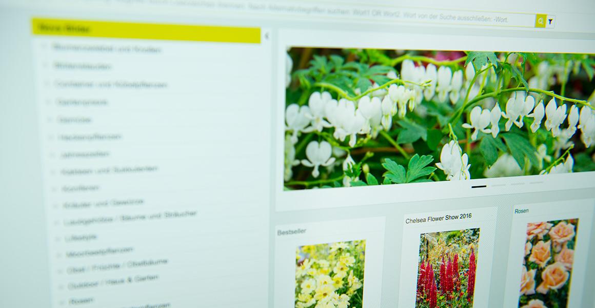 Über 100.000 digitale Pflanzenbilder in einer Datenbank - direkt abrufbar.