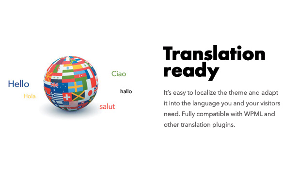 Diginex is translation ready