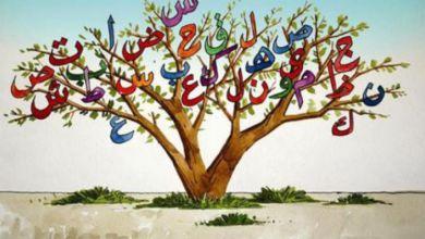 Photo of المصطلحات العربية المقنرَضة في المجال المعماري الأندلسي