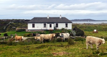 Connacht - the home of Fergus and Mary Rose Cahall, who were attached to the Chieftains, at Aughrusbeg, near Cleggan