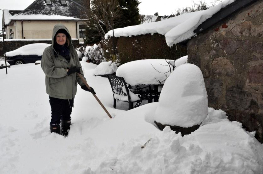 Bernie in snow 1