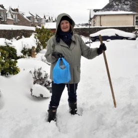 Bernie in the snow 9