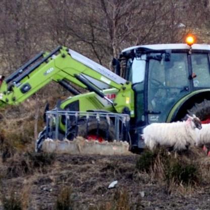 women farmers - Sheep farmer feeding his flock in Glen Fruin high above Loch Lomondside .jpg changed
