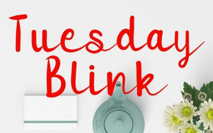 Tuesday Blink Font