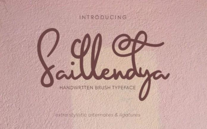 Saillendya Font