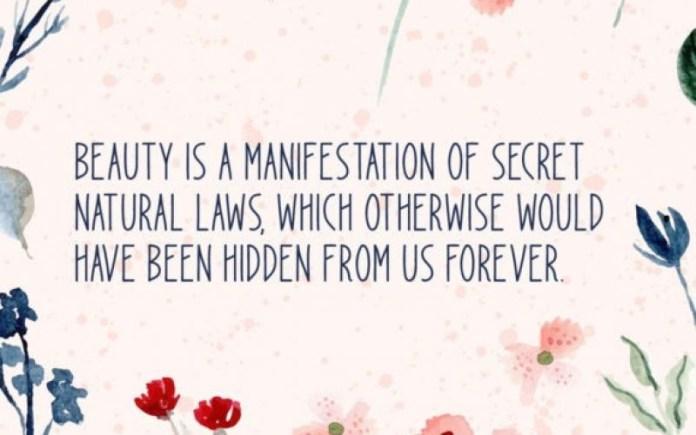 Spread Beauty Font