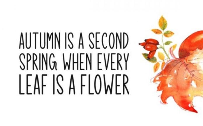 Autumn Arbor Font