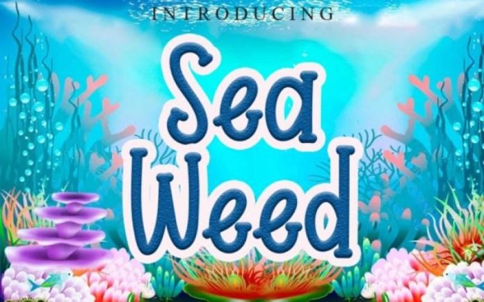 Sea Weed Font