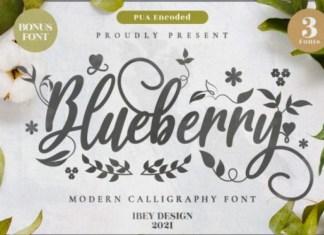 Blueberry Love Font