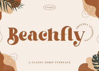 Beachfly Trial Font
