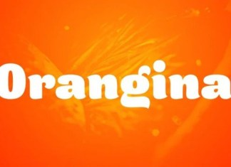Orangina Display Font