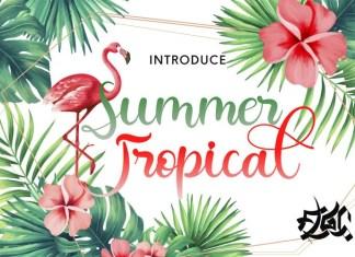 Summer Tropical Script Font