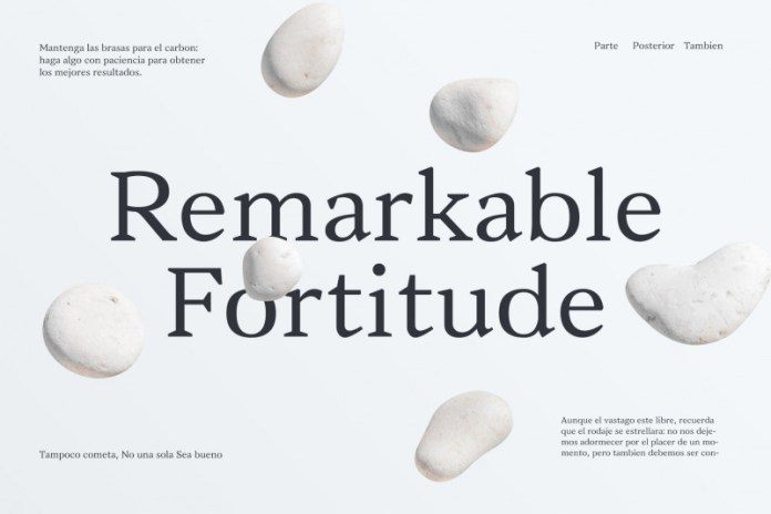 Vanio Serif Font