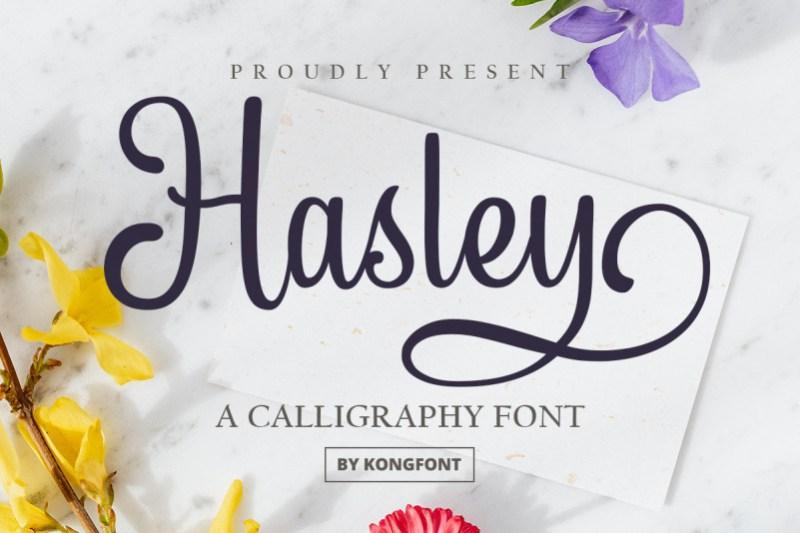 Hasley Calligraphy Font