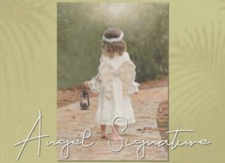 Angel Signature Script Font
