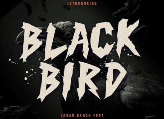 Black Bird Display Font
