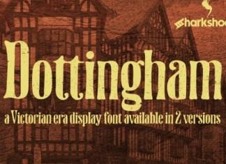 Dottingham Display Font