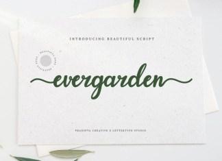 Evergarden Calligraphy Font