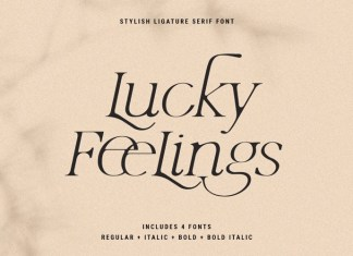 Lucky Feelings Serif Font