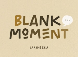 Blank Moment Display Font