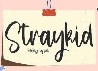 Straykid Script Font