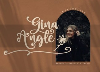 Gina Angle Script Font