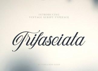Trifasciata Calligraphy Font