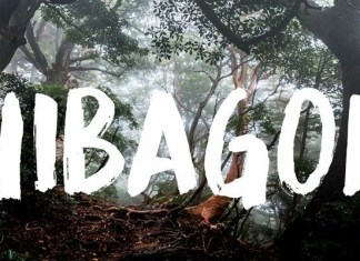 Hibagon Font