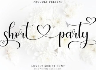 Short Party Calligraphy Font