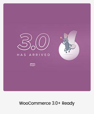 Puca - Optimized Mobile WooCommerce Theme - 99