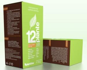 12-plante