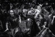 La batalla by alfonso maseda varela