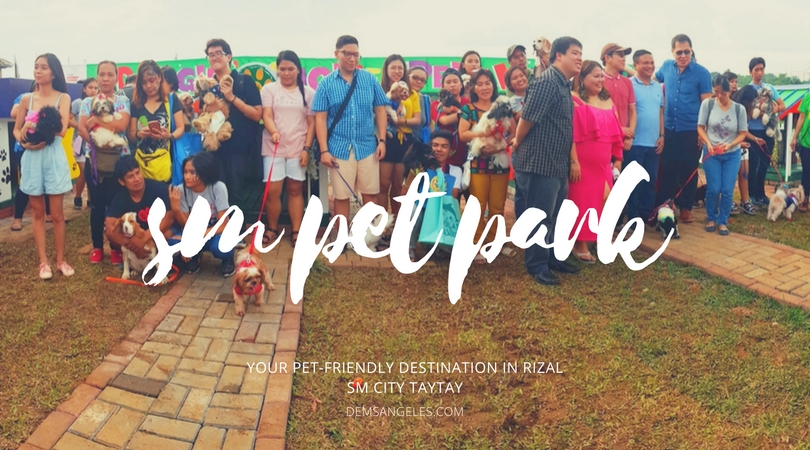LOOK: First Ever SM Pet Park, SM City Taytay