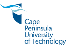 CPUT Application Status