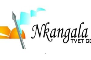 Nkangala TVET College Courses