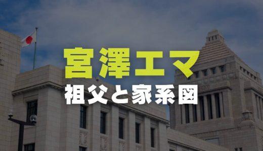 宮澤エマの家系図|祖父の宮澤喜一元首相の経歴や画像と父親の国籍を調査