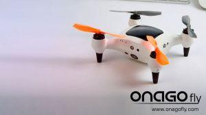 onagofly-2