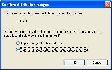 Confirm Attributes Changes dialog box for decryption