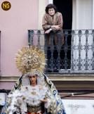 Guadalupe de las Aguas. Traslado extraordinario al Sagrario | Francisco Santiago