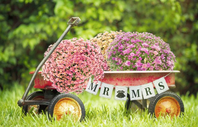 Decorating Wagon For Baby In Wedding How To Decorate A Red Wagon For A Wedding Lovetoknow