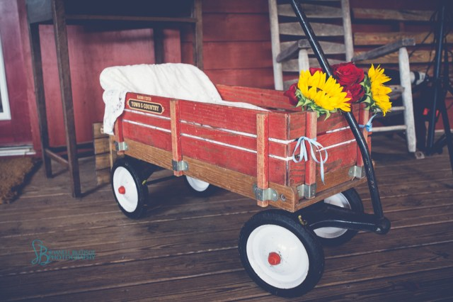 Decorating Wagon For Baby In Wedding Jenny And Ryans Wedding At Sampsons Hollow Bledsoe Photography