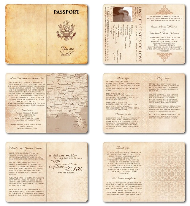 Printable Wedding Invitation Wedding Invitation Passport Printable Template Vintage Passport 6