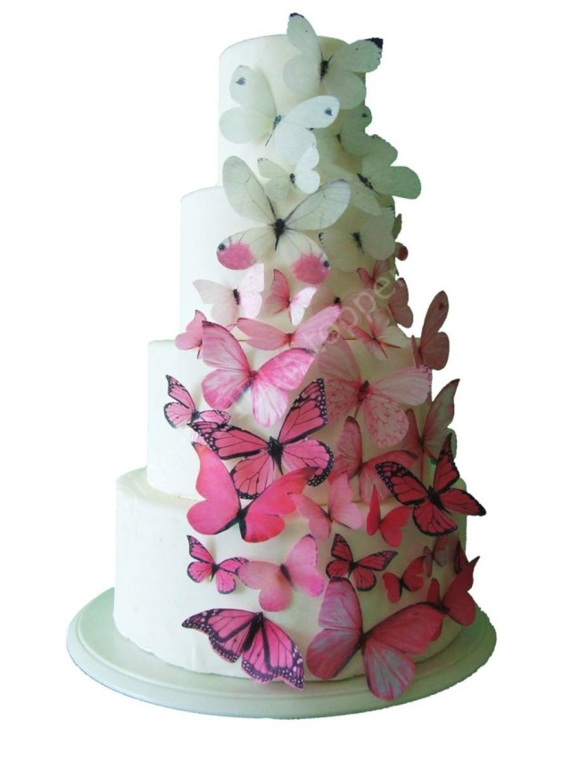 Wedding Cake Decorating Supplies Incredible Toppers Ombre Edible Butterflies In Pink Cake Toppers