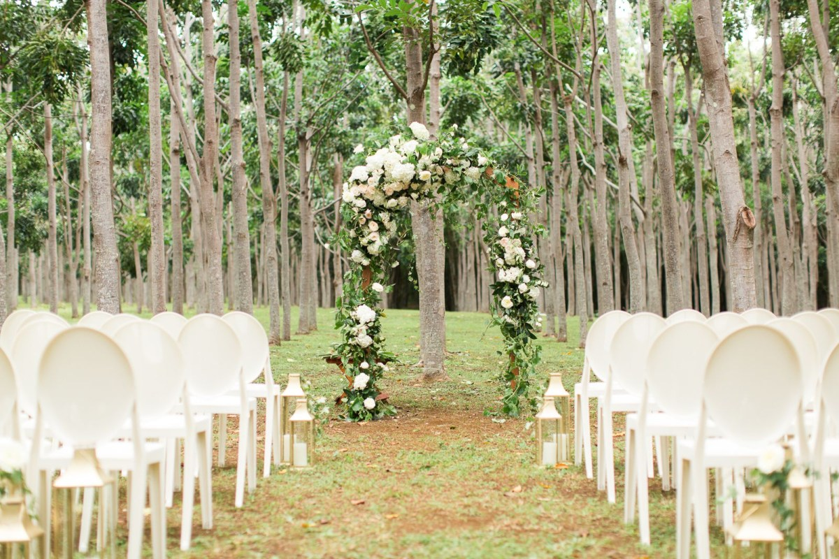 Wedding Tree Decorations 44 Outdoor Wedding Ideas Decorations For A Fun Outside Spring Wedding