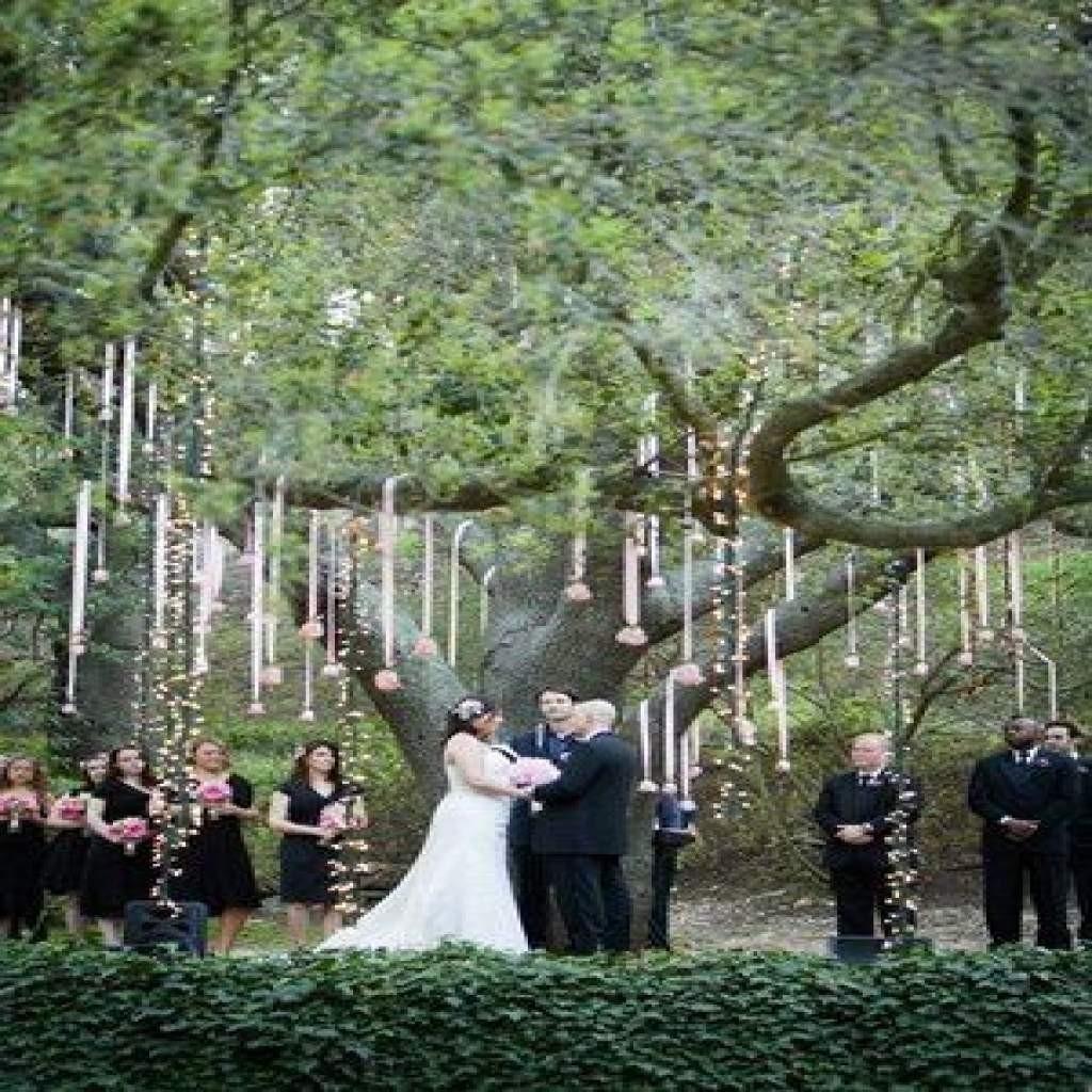 Wedding Tree Decorations Wedding Ceremony Tree Decorations Wedding Decoration