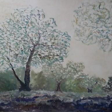 Olivenlund Olie på lærred 80x75 cm