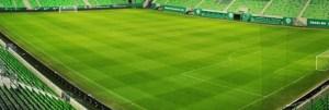 stadion gyep - stadion gyep