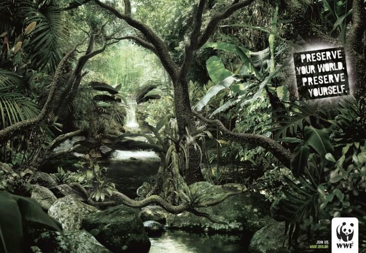 World-Wildlife-Fund-faces--1545984-1200x828