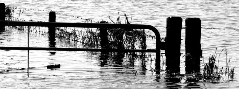 ooijonderwater1523p